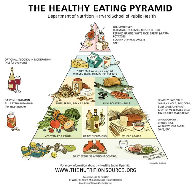 harvard ernährungspyramide kohlenhydrate tabelle