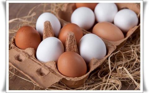 Nährwerttabelle Eier | www.kohlenhydrate-tabellen.com