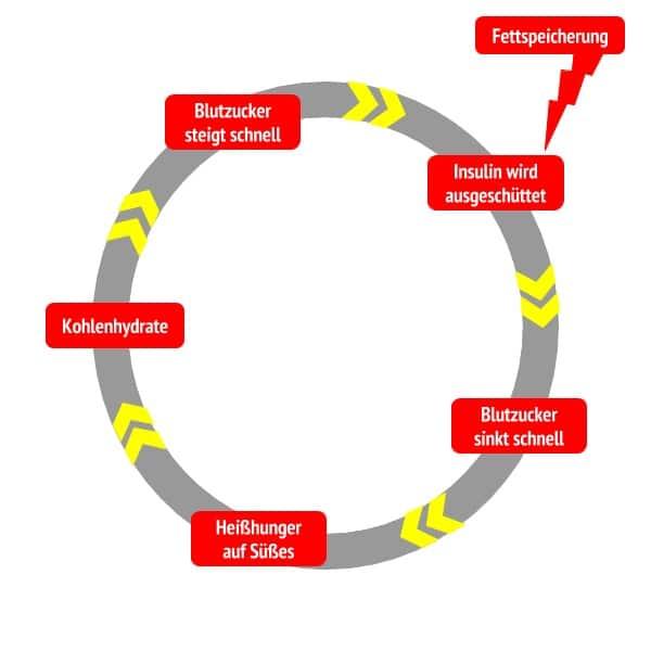 Teufelskreislauf Fettspeicherung-Heißhunger