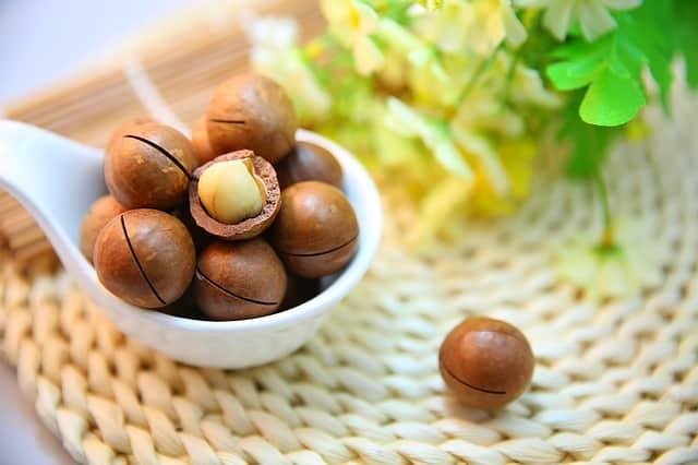 Makadamia Nüsse | Kohlenhydrate-Tabellen.com